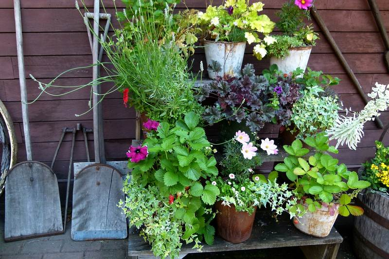 Designing a Small Garden Begins with Good Planning